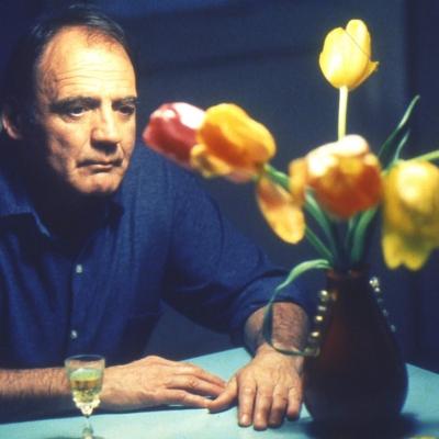 Tangó és tulipán