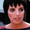 Liza Minnelli profilképe