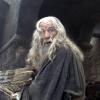 Sir Ian McKellen profilképe
