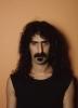 Frank Zappa profilképe