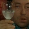 Serge Gainsbourg profilképe