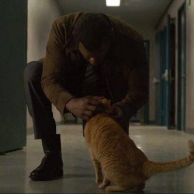 Samuel L. Jackson jól megvolt a cicával a forgatáson
