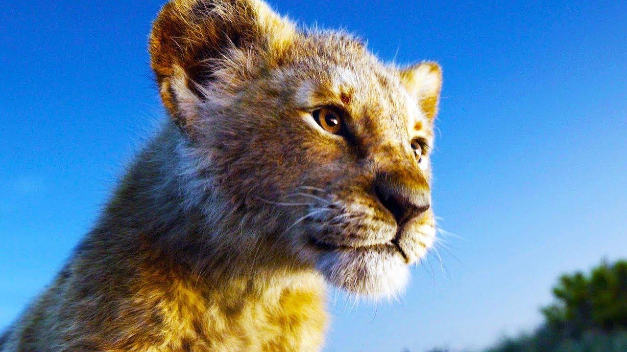 Az oroszlánkirály – Azt hozza, amit ígér, a többi a kritikusok baja