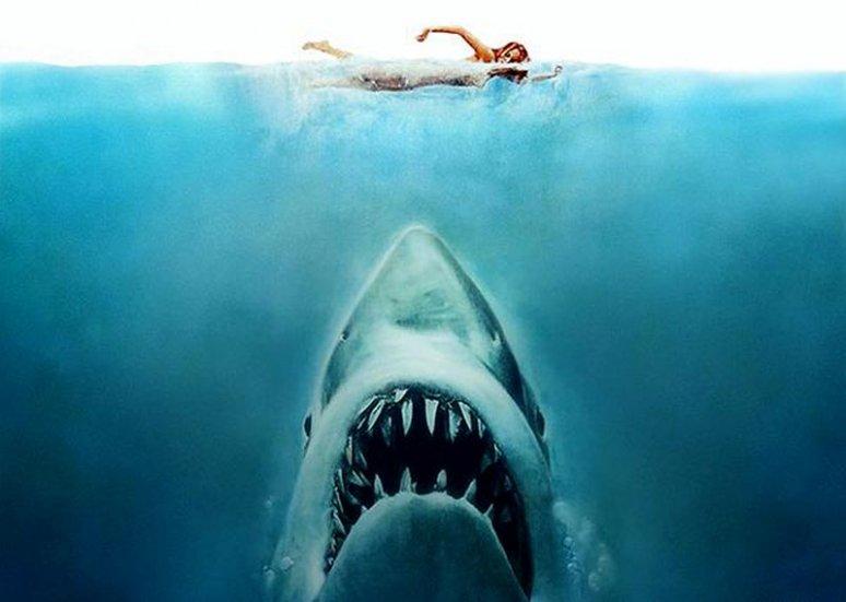 15 dolog, amit nem tudtál A cápáról