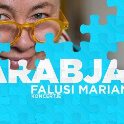 Darabjaim - Falusi Mariann koncertje
